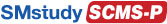 Marketing Strategy Professional (SCMS-P™)